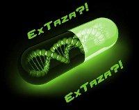 ExTaza?! - zdjęcie