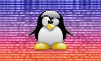 Linux' - zdjęcie