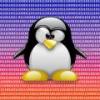 Linux'%s - zdjęcie